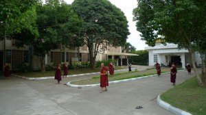 Walking meditation outside the meditation hall MSY
